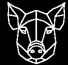 pig_white